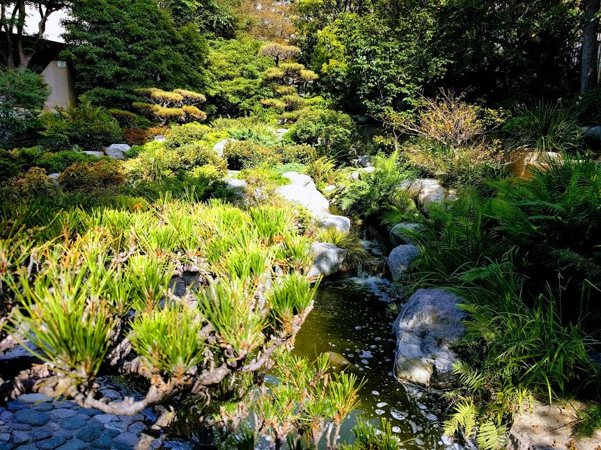 Japanese Garden in Little Tokyo
