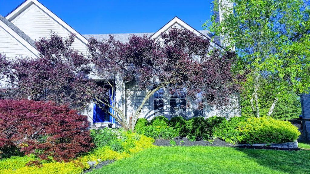 Front view of house in Pickerington, Ohio