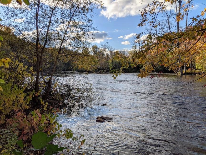 Water near Nichols Arboretum in Ann Arbor.